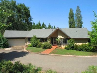 5421 Reservoir Road, Georgetown, CA 95634 - MLS#: 18016177
