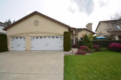 3518 Iron Canyon Circle, Stockton, CA 95209 - MLS#: 18016247