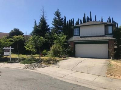 10 Windbrook Court, Sacramento, CA 95823 - MLS#: 18016255