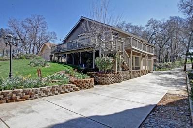 11669 Lakeshore South Drive, Auburn, CA 95602 - MLS#: 18016393