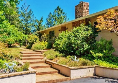 3720 Wilson Loop, Placerville, CA 95667 - MLS#: 18016964