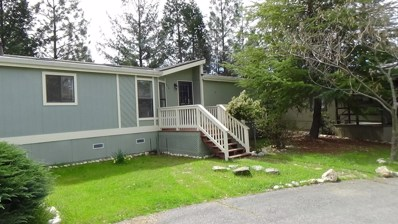 21200 Todd Valley Rd UNIT 116, Foresthill, CA 95631 - MLS#: 18017045