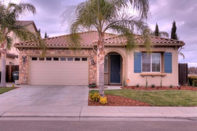 2437 Trident Drive, Modesto, CA 95355 - MLS#: 18017058