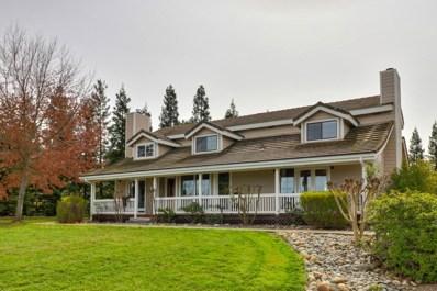 12380 Overland Way, Wilton, CA 95693 - MLS#: 18017255