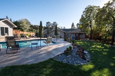 4141 Sottile Lane, Shingle Springs, CA 95682 - MLS#: 18018493