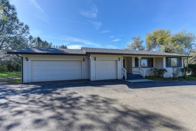4610 Benton Way, Shingle Springs, CA 95682 - MLS#: 18018570