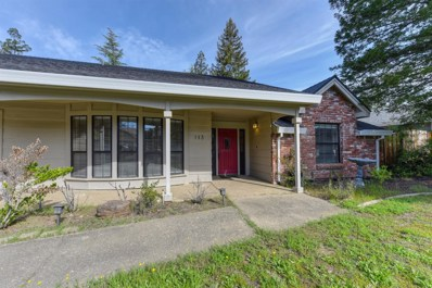 113 S Fork Way, Folsom, CA 95630 - MLS#: 18019297