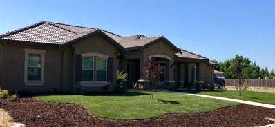 8025 Polo Crosse Avenue, Sacramento, CA 95829 - MLS#: 18019837
