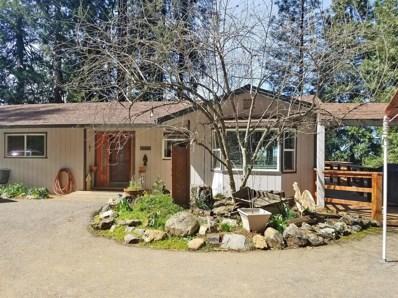 3837 N Canyon Road, Camino, CA 95709 - MLS#: 18019843