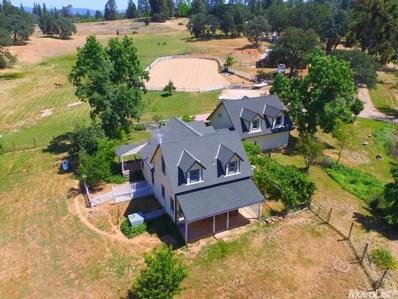 850 Kingston Way, Colfax, CA 95713 - MLS#: 18020122