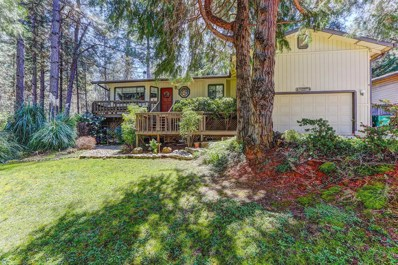 10975 Ball Road, Grass Valley, CA 95949 - MLS#: 18020238