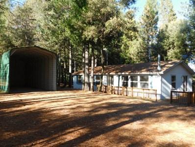 19051 E Pine Drive, Pioneer, CA 95666 - MLS#: 18020285