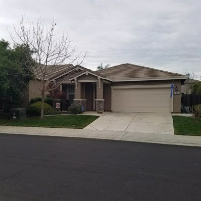 10132 Atkins, Elk Grove, CA 95757 - MLS#: 18020451