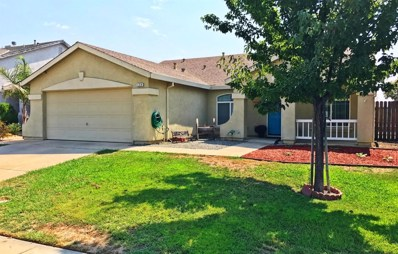 124 Johnson Court, Wheatland, CA 95692 - MLS#: 18020462