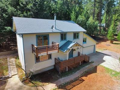5410 Pony Express Trail, Camino, CA 95709 - MLS#: 18020477