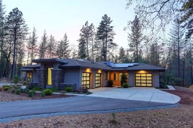 1505 Ridgemore Drive, Meadow Vista, CA 95722 - MLS#: 18020639