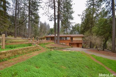 11855 Big Oak Court, Pine Grove, CA 95665 - MLS#: 18021366