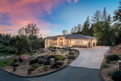 1480 Lodge View Drive, Meadow Vista, CA 95722 - MLS#: 18021653
