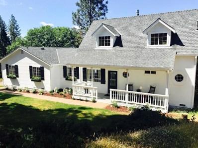 12383 Eldel Road, Pine Grove, CA 95665 - MLS#: 18021919