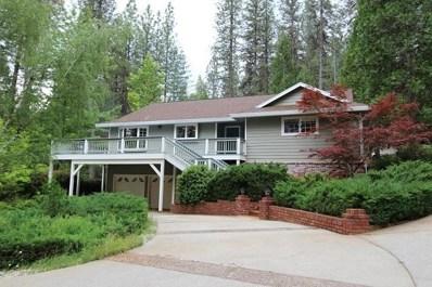 14046 Dalmatian Drive, Grass Valley, CA 95945 - MLS#: 18022005