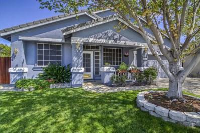 8560 Dewberry Way, Elk Grove, CA 95624 - MLS#: 18022192