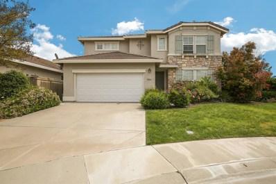 9791 Fiddleneck Court, Elk Grove, CA 95757 - MLS#: 18022429