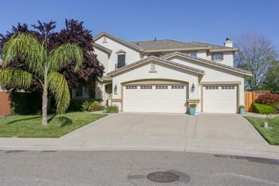 9587 Roan Fields Place, Elk Grove, CA 95624 - MLS#: 18023312