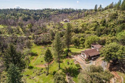 19445 Sun Valley Road, Colfax, CA 95713 - MLS#: 18023405