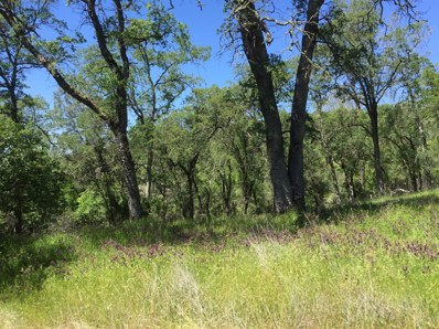 0  Cothrin Ranch Road, Shingle Springs, CA 95682 - MLS#: 18023477