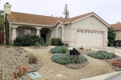 317 Pinnacles Drive, Woodland, CA 95695 - MLS#: 18023975