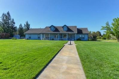 10532 Halfway Road, Elk Grove, CA 95624 - MLS#: 18024457