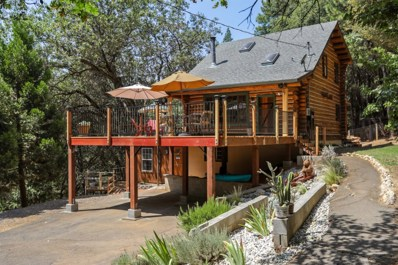 6236 Pine Cone Court, Foresthill, CA 95631 - MLS#: 18024627