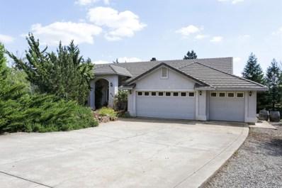 6341 Butterfield Way, Placerville, CA 95667 - MLS#: 18024631