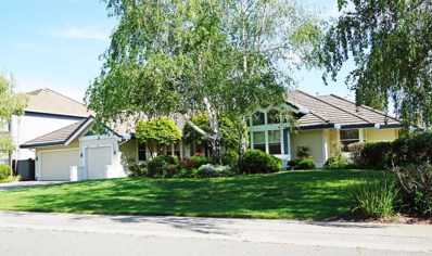 870 Lake Front Drive, Sacramento, CA 95831 - MLS#: 18025191