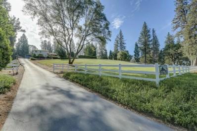 19460 Placer Hills Road, Colfax, CA 95713 - MLS#: 18026112