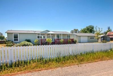 8621 Berry Road, Wilton, CA 95693 - MLS#: 18026190