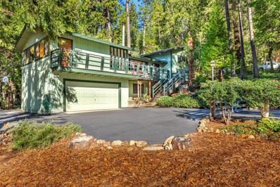 3971 Audubon Drive, Camino, CA 95709 - MLS#: 18026375