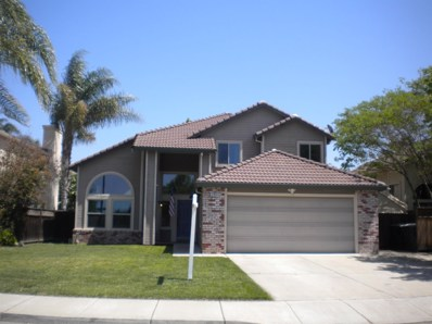 290 Adobe Lane, Tracy, CA 95376 - MLS#: 18026465