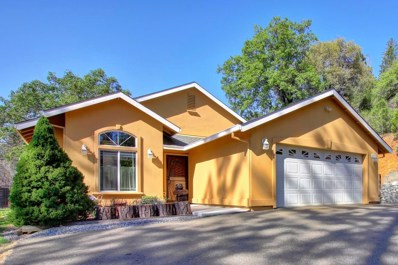 19809 Sun Valley Road, Colfax, CA 95713 - MLS#: 18026575