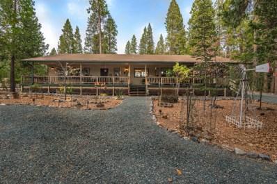 25871 Lupin Road, Volcano, CA 95689 - MLS#: 18026966