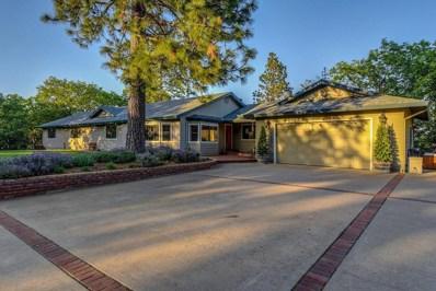 20240 Lookout Rd., Pine Grove, CA 95665 - MLS#: 18027048