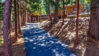 20124 Live Oak Road, Pioneer, CA 95666 - MLS#: 18027509
