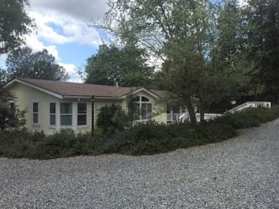 5175 Silent Meadow Lane, Georgetown, CA 95634 - MLS#: 18027517