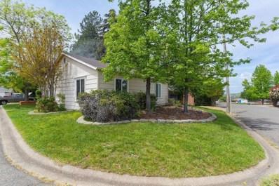 13 Vista Court, Sutter Creek, CA 95685 - MLS#: 18027750