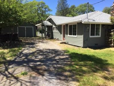 4536 Salmon Falls Road, Pilot Hill, CA 95664 - MLS#: 18028320