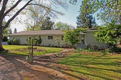 4305 Oak View Drive, Pilot Hill, CA 95664 - MLS#: 18028701