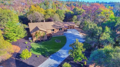17495 N Cherry Creek Road, Grass Valley, CA 95949 - MLS#: 18028867