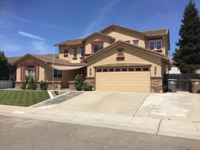9317 Sierra Spring Way, Elk Grove, CA 95624 - MLS#: 18029310