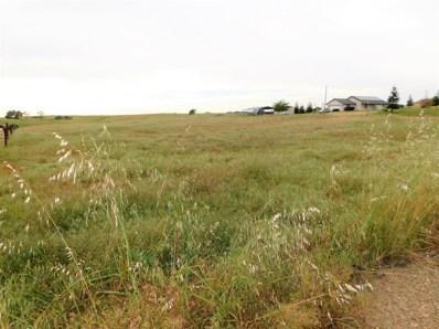 1355  Duck Creek Rd, Ione, CA 95640 - MLS#: 18029338
