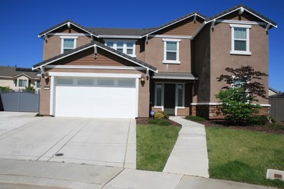 9601 Cramer Cove Court, Elk Grove, CA 95624 - MLS#: 18030366
